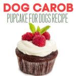 Dog Carob Cupcake