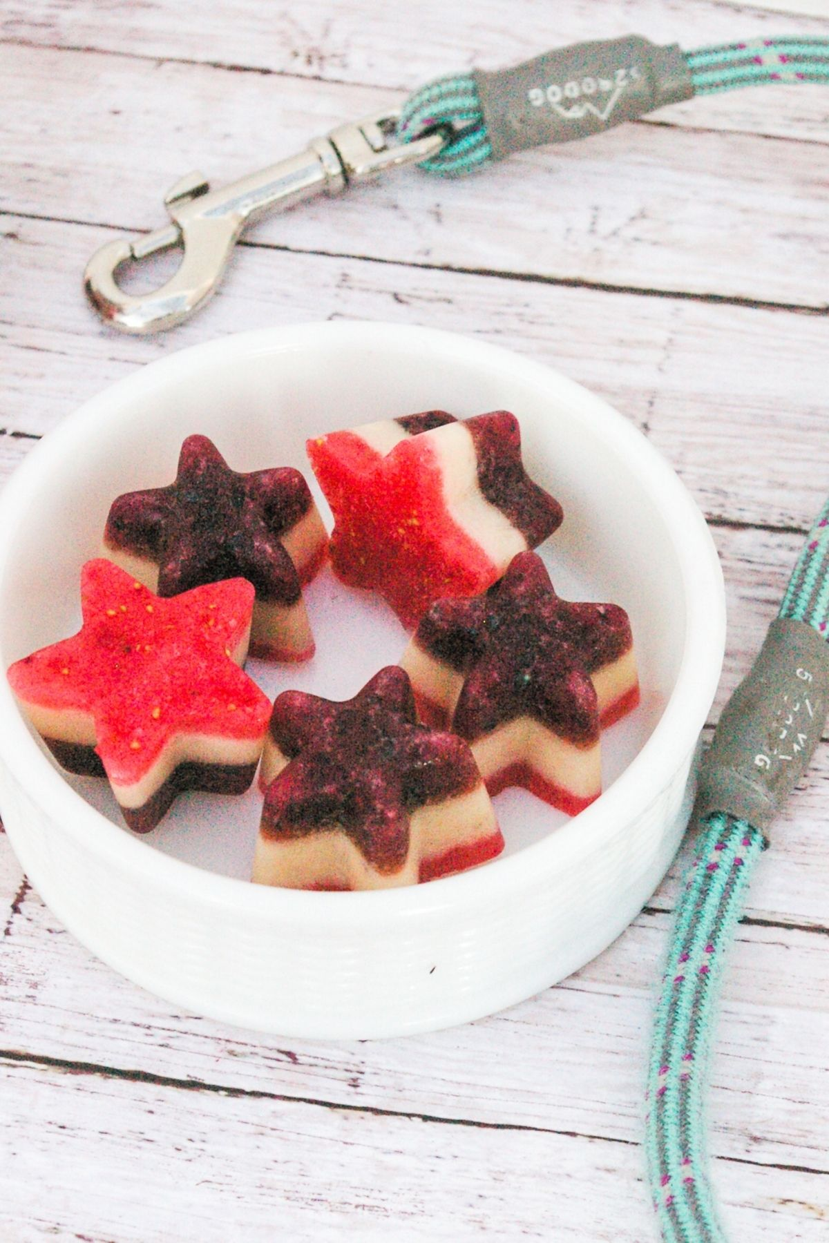 Red, White and Blue Frozen Puppy Stars