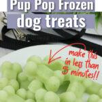 Cucumber pup pop dog treats