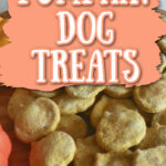 PIN Pumpkin Dog Treats
